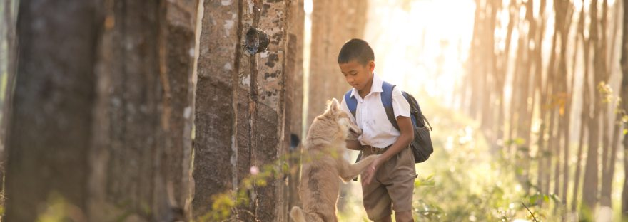 Healthy for Kids to Grow up around Dogs